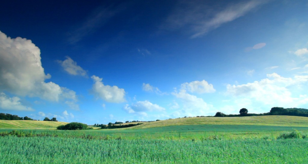 Endless Green Fields 1024x545 Endless Green Fields Screensaver