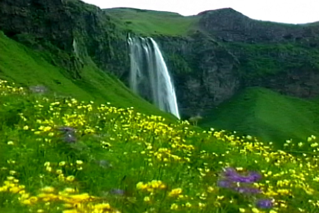 Waterfall and Flower Field 1024x685 Waterfall and Flower Field Screensaver